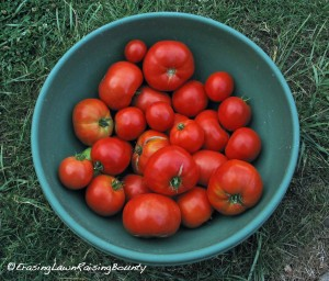 BowlofBigBoyTomatoes-2