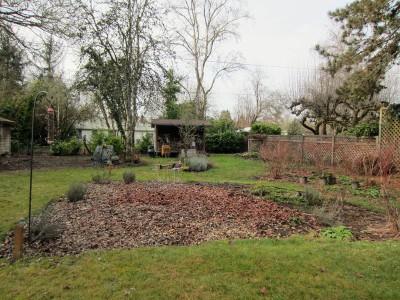 backyard-rr-012817a
