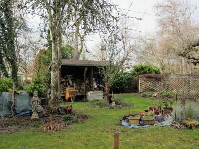 backyard-rr-012817b